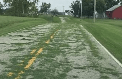 Grass Clippings on road